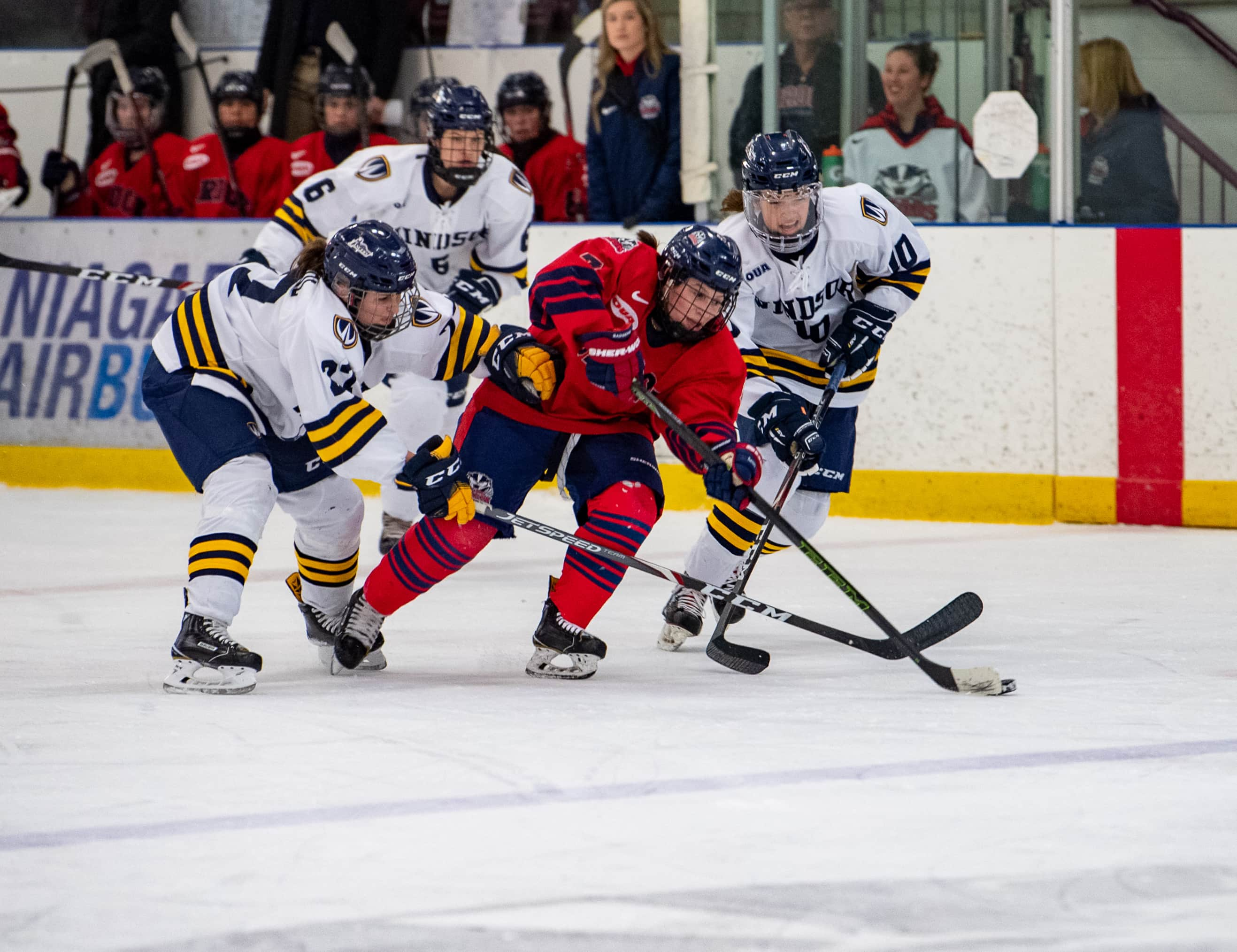 Get us more followers: How Victoria Dewar's research increased online engagement for Brock women's hockey